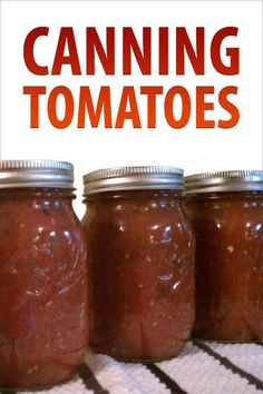 "Canning Tomatoes: ""Canning Tomatoes"" is a collection of step-by-step instructions featuring 12 fantastic recipes for canning tomatoes! Learn everything from the basics of canning to zesty salsa recipes and chutneys. All projects come from Inst. Canning Tips, Home Canning, Canning Recipes, Canning Vegetables, Canning Tomatoes, Tomato Canning, Freezing Vegetables, Roma Tomatoes, Canning Homemade Salsa"
