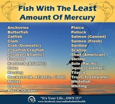 Most of us are leery of eating fish due to high mercury levels. This has become a tragic situation, since no one can argue the health benefits of eating fish! Yet, many fish, especially fish like Tuna, have become nearly too toxic to eat. Here's a helpful list of fish (and other seafood) with the least amount of mercury. Remember that cilantro is an excellent mercury chelator! Which makes cilantro an excellent accompaniment!