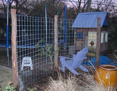 Construct a trellis screen to make a vine-covered garden wall - Digging Privacy Trellis, Wire Trellis, Balcony Privacy, Pergola Patio, Pergola Plans, Cattle Panels, Cedar Posts, Evergreen Vines, Covered Garden