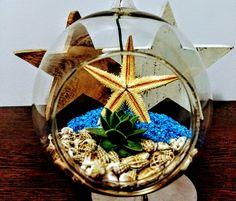 Sea Terrarium - by GreenCorner