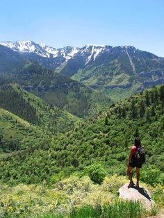 5 Family-Friendly Activities That Will Make You Book Your Flight to Logan, Utah Right NOW