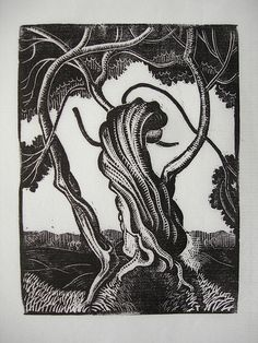 Artist unknown. Tree. Print from 1930s wood engraving block.