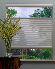 Silhouette® window shadings with EasyRise™ cord loop eclectic cellular shades