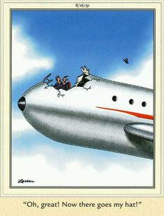 Far Side Cartoons, Far Side Comics, Funny Cartoons, Funny Comics, Airplane Humor, Gary Larson, The Far Side, Comic Strips, Funny Pictures