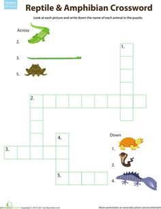 reptile classification worksheet circles fun and all. Black Bedroom Furniture Sets. Home Design Ideas
