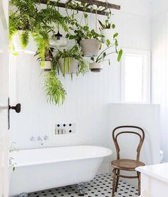 House Tour: An Eclectic Modern Country Home. Love the Ladder with Hanging Plants… House Tour: An Eclectic Modern Country Home. Modern Country, Country Style, Country Decor, Farmhouse Decor, Estilo Country, Bedroom Country, Farmhouse Interior, Country Farmhouse, Country Kitchen