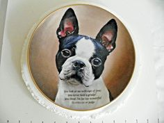 BOSTON TERRIER EYES OF LOVE DANBURY MINT COLLECTORS PLATE LIMITED EDITION