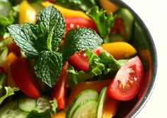 The One Diet That Can Cure Most Disease: Part 1 - Intent Blog