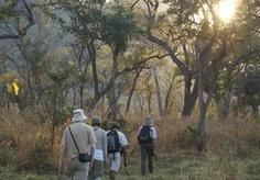 Game Walk in the Lugenda Wilderness. Visit our website at www.raniresorts.com