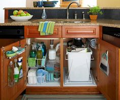 Organizing under the kitchen sink cabinets, love the slide out garbage can and the use of the doors.