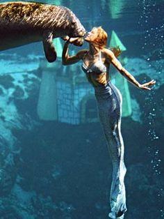 Under The Sea- Everyone loves Mermaids