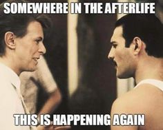 Reunited! - More at: Me Kago De Risa Help me Click Here! #memes #lol #funny #jokes