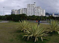 Rio de Janeiro - Flamengo - Brasil