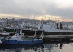 Touza anuncia que armadores de Vigo han contratado ya seis pesqueros | farodevigo.es