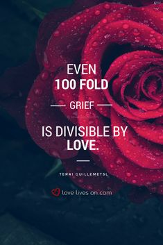 125 Best Grief and Loss Quotes images in 2019