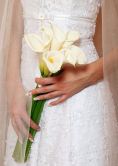 I will have a bouquet of long stem calla lillies and each my bridesmaids will have a single long stem calla lilly. This had been my plan since I was really little and Jasmine and Aladdin had calla lilies at their wedding. Calla Lily Bridal Bouquet, Calla Lily Flowers, Calla Lily Wedding, Calla Lillies, Bridal Flowers, Floral Wedding, Purple Flowers, Simple Wedding Bouquets, Bride Bouquets