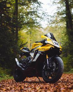 R15 Yamaha, Yamaha Motorcycles, Yamaha Yzf R1, Sport Motorcycles, Moto Bike, Motorcycle Bike, Harley Davidson, Yamaha Sport, Bike Photoshoot