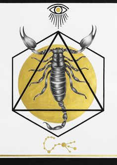 """Second part of my series from the solo show """"Transformation"""" based on the Zodiacs in the form of insects. Zodiac Signs Astrology, Scorpio Zodiac, Behance, Gcse Art, Zine, Peonies, Rooster, Deer, Insects"""
