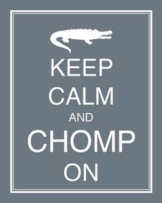 Can't wait to get back to Florida and chomp on some Gator! Florida Girl, Florida Gators, Gator Party, Tim Tebow, Swim Team, Faith Quotes, School Days, Make Me Happy, Cool Words