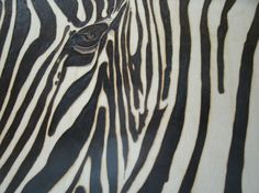 Woodburn art Zebra upclose and personal by WoodBurningbyMarsha on Etsy