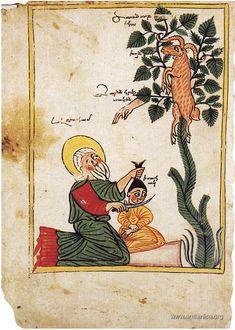 Ars longa, vita brevis   Путь искусства долог - Евангелие из армянского монастыря Ахтамар 1391 года