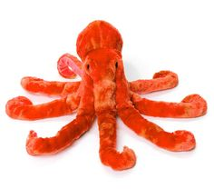 Cozy up to eight arms with our orange octopus plush from our Gift & Bookstore!