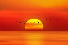 Photo When The Sun Goes Down by Shady S. on 500px