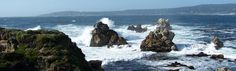 Point Lobos -- located near Carmel by the Sea and Big Sur in Central California -- has inspired the photography of Edward Weston, the poetry of Robinson Jeffers and the paintings of Percy Gray.  It is truly one of my favorite places to seek solitude ...