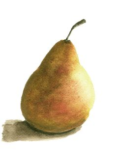 TITLE: Golden Pear    Printed on archival, lightly textured velvet fine art paper with pigment inks, very closely replicating the look and feel of the