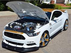 Hurst's white and gold paint scheme has been synonymous with performance in… New Ford Mustang, Ford Gt, Pony Car, Performance Cars, Paint Schemes, Gold Paint, Vehicles, Mustangs, Autos