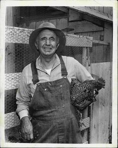 .Walter Brennan ... The Real McCoys ... I think the chickens name was Henrietta.