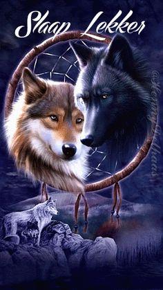 Slaap lekker  (2 wolven in dreamcatcher)