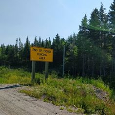 Day Stephenville Crossing, NL to Deer Lake, NL (A Terrifying & Beautiful Ride) – July – inlaid-spot 5 Year Plan, New Brunswick Canada, First Humans, In 2015, Newfoundland, Disappointment, Moose, Fun Facts, Deer