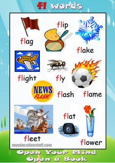 Words starting with fl -  Nice phonics poster for your Word Wall, the fridge or the back of the bathroom door.