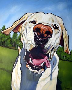 Ringo. I love Kathryn Wronski's bold pet portraits. See more by clicking Ringo's picture.