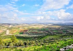 Beautiful view from a mountain to the Israeli by NikaLerman, $25.00