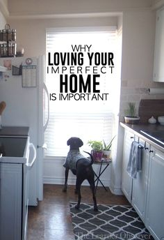 Why Loving Your Imperfect Home is Important | The Learner Observer