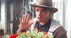 Marty's Garden Podcast How to Grow Watercress at Home for the home gardener.  Also Watercress Microgreens techniques you can learn too!
