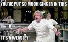 Laughing is a good thing.It's make your life so awesome.Today we collect Harry Potter Memes sad for looking that laughing on your face.It's really so funny in sad version.Just check out these Harry Potter Memes sad and also share with your friends. Fandoms, Meme Internet, Scorpius And Rose, Must Be A Weasley, Ron Weasley, Weasley Twins, Harry Potter Jokes, Harry Potter Funny Pictures, Harry Potter Tumblr Funny