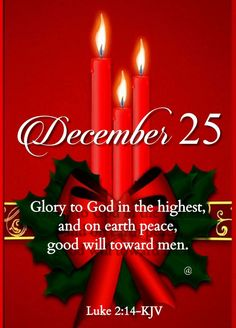 Merry Christmas Message, Christmas Card Messages, Merry Christmas Pictures, Merry Christmas Quotes, Christmas Blessings, Merry Christmas And Happy New Year, Christmas Humor, Christmas Greetings, Holiday Cards