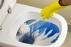 10 Places in the Bathroom You Forgot to Clean: All Parts of the Toilet