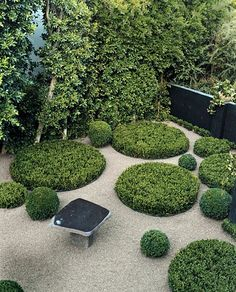 Have you ever heard about a Sunken garden? If you are familiar with an English garden style then you might now what it is. The Sunken garden is a formal, traditional English-style garden which is a… Sunken Garden, Gravel Garden, Pea Gravel, Modern Landscaping, Outdoor Landscaping, Small Gardens, Outdoor Gardens, Landscape Architecture, Landscape Design