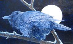 Raven, by John Van Zyle