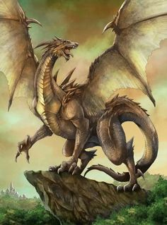 Brown Dragon