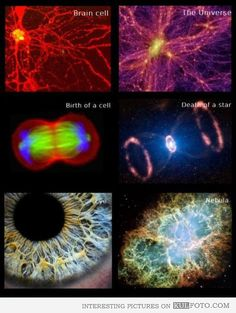 Human body and The Universe similarities - Pictures show interesting similarities between human body and The Universe.
