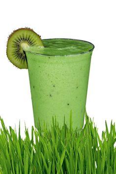 Simple Wheatgrass Juice Recipe - Reasons Why Wheatgrass And Wheatgrass Juice Is Perfect For Your Health