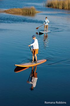 Stand-up paddle boarding at Naples Paddle Board.