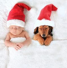 Picture of sleeping christmas baby and dachshund puppy wearing santa hats.