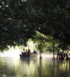 Paradise....Kinabatangan River, Borneo