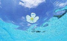 モルディブの水と青空 #12 - 1920x1200